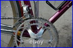 Colnago master più campagnolo record italy steel bike eroica vintage mavic sup