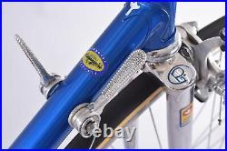 Pinarello Treviso Steel Road Bike Columbus Campagnolo Nuovo Record Pantographed